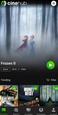 CineHub App Movies & TV Shows on iPhone & iPad